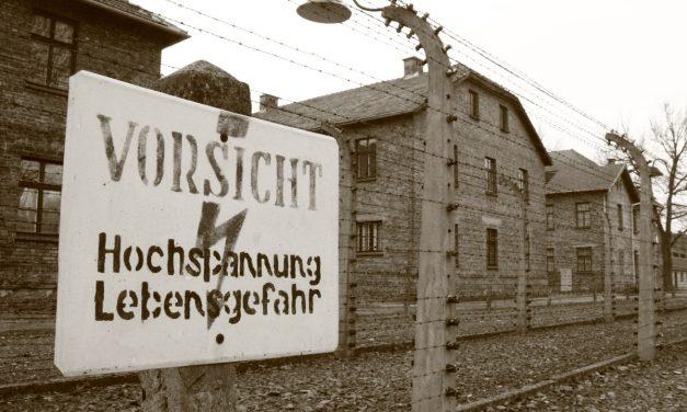 """Rathaus Voerde stellt Schüler-Fotos des GV-Projektkurses """"Auschwitz – Gegen das Vergessen"""" aus"""