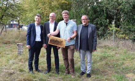 Imker-AG stellt ihre Arbeit vor
